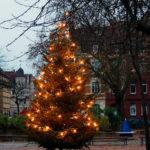 Der Baum kommt- der Adventsmarkt nicht